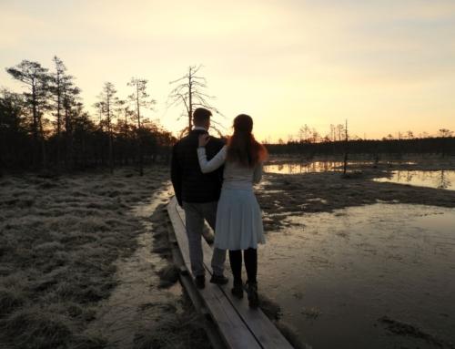 Pažintinis Viru pelkės takas Estijoje. Pabuvoję čia kartą, jūs vėl ir vėl norėsite grįžti!